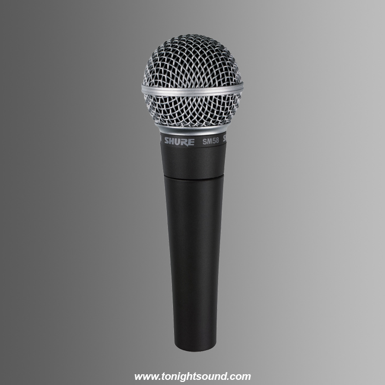 Location micro Shure SM58 chant