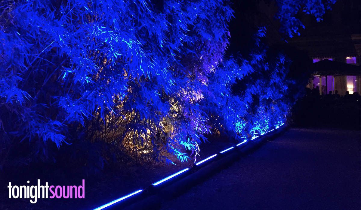 Tapis bleu et éclairage architectural pour Salesforce chez Apicius